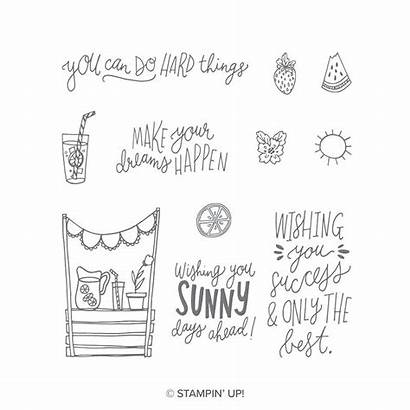 Sunny Stampin Days Clear Stamp Stamps
