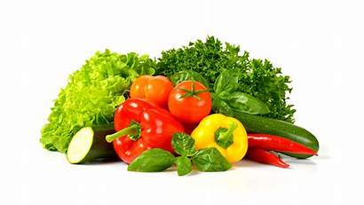 Vegetables Eat Many Why Need