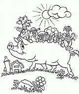 Coloring Pig Pigs Printable Farm Animal Animals sketch template