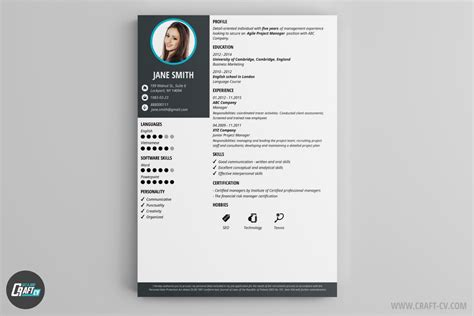 Cv Template Maker by Cv Maker Professional Cv Exles Cv Builder