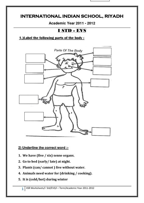 Parts Of The Body Worksheet Year 1  Body Part Images For Kids Parts Flashcards 3rd Grade Fcat