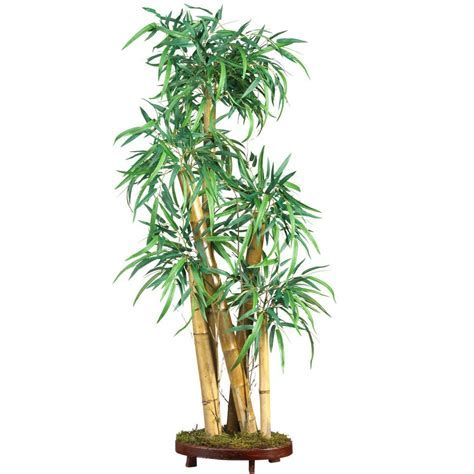 3 Ways to Use Bamboo Plants In and Around Your Home