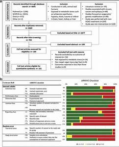 Prisma Flow Diagram And Methodological Quality Assessment