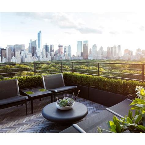 rooftop garden project in new york city homes