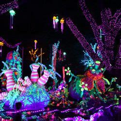 Light Show Houston by Zoo Lights 259 Photos 115 Reviews Festivals 6200