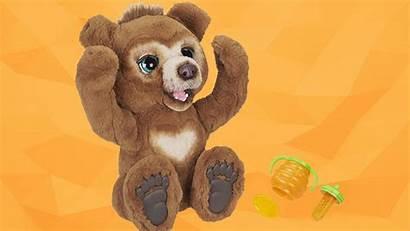 Cubby Bear Furreal Friends Care Hasbro Curious