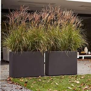 Bac Rectangulaire Pour Bambou : jardini re muret elho pure soft brick l80 h59 cm ~ Nature-et-papiers.com Idées de Décoration