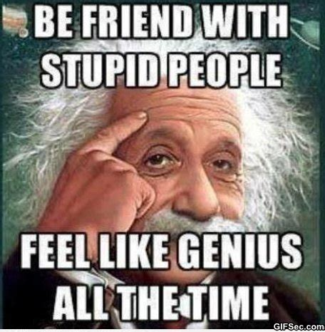 Funny Stupid People Memes - stupid funny jokes and quotes quotesgram