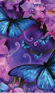 Butterflies and Flowers HD Wallpaper | Background Image ...
