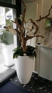 Kunstblumen Orchideen Topf : kunstblumen k nstliche blumen k nstliche orchideen ~ Whattoseeinmadrid.com Haus und Dekorationen
