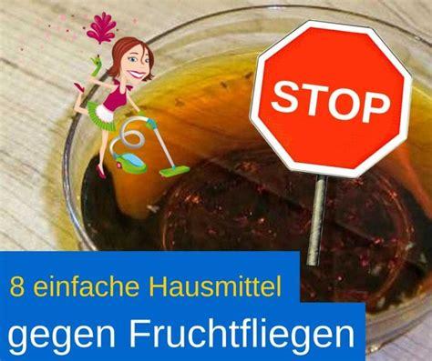 Obstfliegen Im Bad by Hausmittel Gegen Fruchtfliegen Beste Tipps