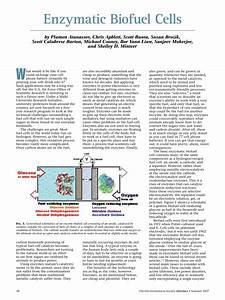 Pdf  Enzymatic Biofuel Cells