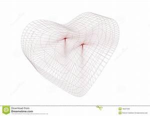 3d Wire Frame Heart Stock Photos