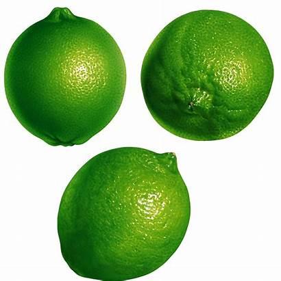 Lime Transparent Pngimg Juice Purepng Citrus