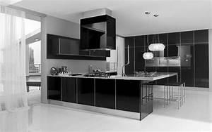 30 monochrome kitchen design ideas for Modern house interior design kitchen
