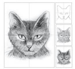Easy Cat Drawings Pencil