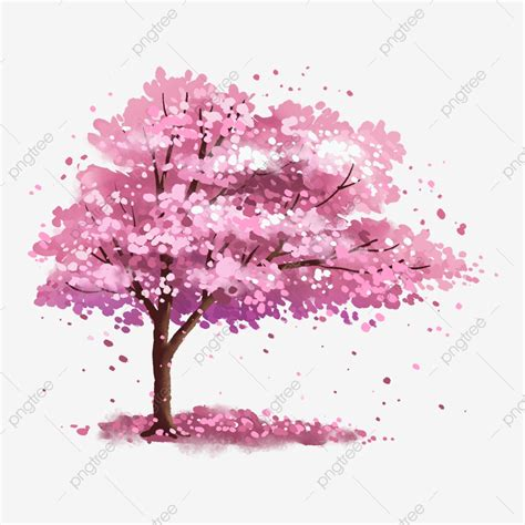 pink romantic cherry blossom tree   cherry