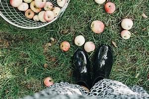 Was Kostet Ein Heizkörper : was kostet eigentlich ein schrebergarten gartenblog hauptstadtgarten ~ Buech-reservation.com Haus und Dekorationen