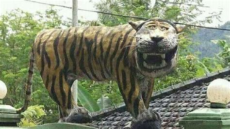 roar   indonesian military removes mocked tiger