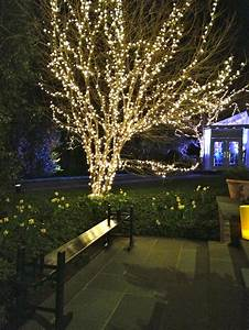 outdoor lights for trees lights trees in home designs With outdoor net lighting for trees