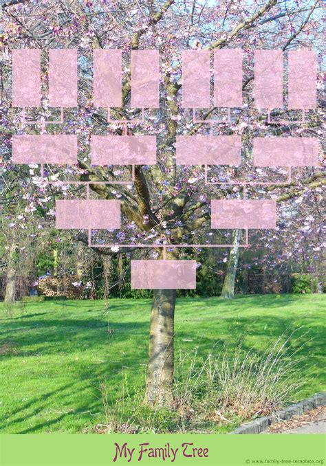 family tree templates genealogy clipart