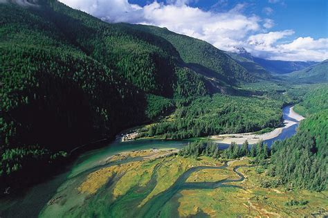 Bedwell River Valley ? Vancouver Island News, Events