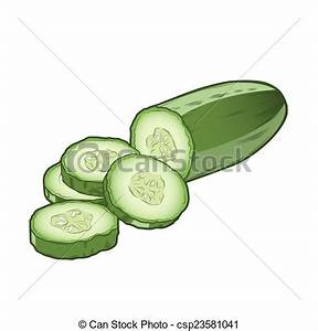 Drawing of Sliced cucumber isolated on a white background ...