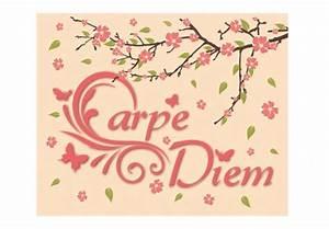 Leinwandbilder Mit Sprüchen : leinwanddruck mit spruch carpe diem als wandbild wall ~ Whattoseeinmadrid.com Haus und Dekorationen