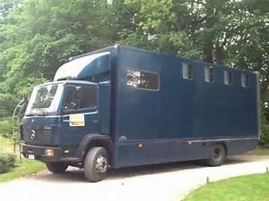 2 Chevaux Occasion : camions chevaux 2 chevaux places vendre equirodi belgique ~ Medecine-chirurgie-esthetiques.com Avis de Voitures
