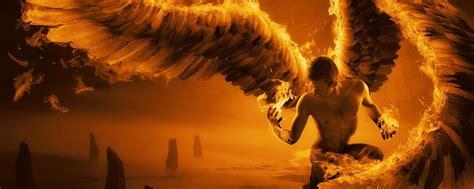 wings  fire wallpaper gallery