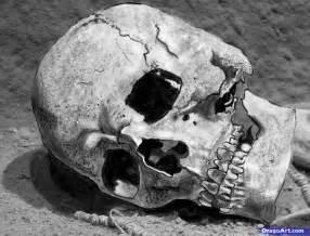 Realistic Human Skull Drawing