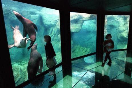 nausicaa aquarium de boulogne sur mer hotel des argousiers sur la c 244 te d opale 224 ambleteuse