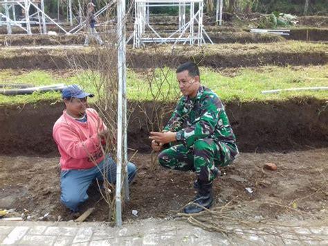 kebun wisata durian  bumiayu suara media