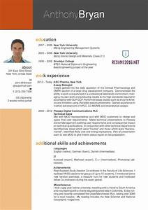 Best resume it professional