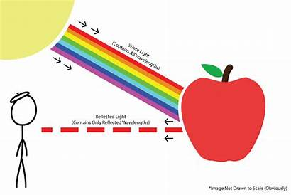 Reflection Apple Science Does Into Mean Diagram