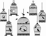 Cage Coloring Bird sketch template