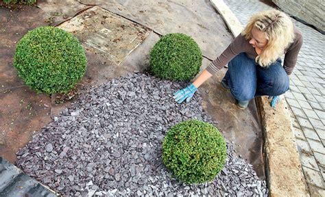 rindenmulch gegen unkraut gartenvlies gegen unkraut pflanzenschutz selbst de