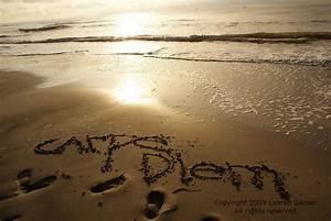 Carpe Diem Written in the Sand Photography Brown Mocha Beach