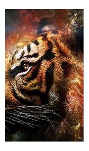 Wallpapers Tiger - Wallpaper Cave