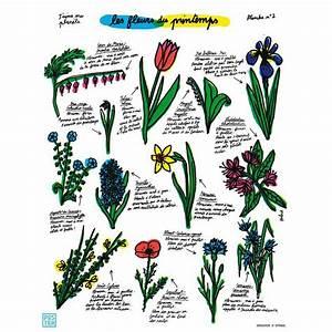 affiche quotles fleurs du printempsquot imagerie depinal With affiche chambre bébé avec livraison fleurs sans frais