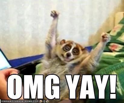 Yay Meme - fancy yay meme 80 skiparty wallpaper