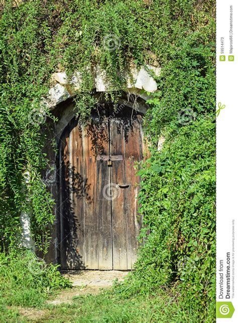 wine cellar door   hill side stock photo image