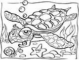 Coloring Ocean Pages Animals Sea Printable Animal Habitat sketch template