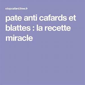 Tuer Les Cafards : pate anti cafards et blattes la recette miracle home ~ Melissatoandfro.com Idées de Décoration