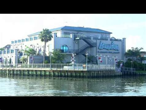 aquarium kemah texas youtube