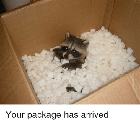when your package arrives by your package has arrived package meme on me me