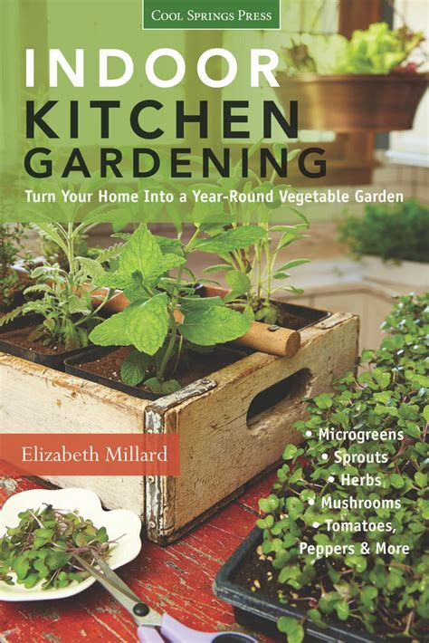 grow an indoor kitchen garden hgtv