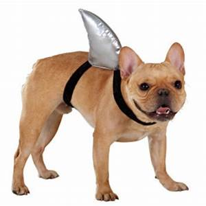 Top Paw® Shark Fin Costume | Costumes | from Pet Smart ...