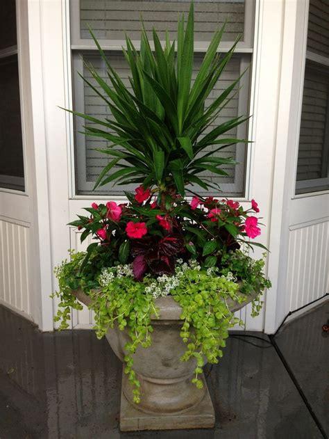 summer planter ideas summer planter branch out design seasonal planter