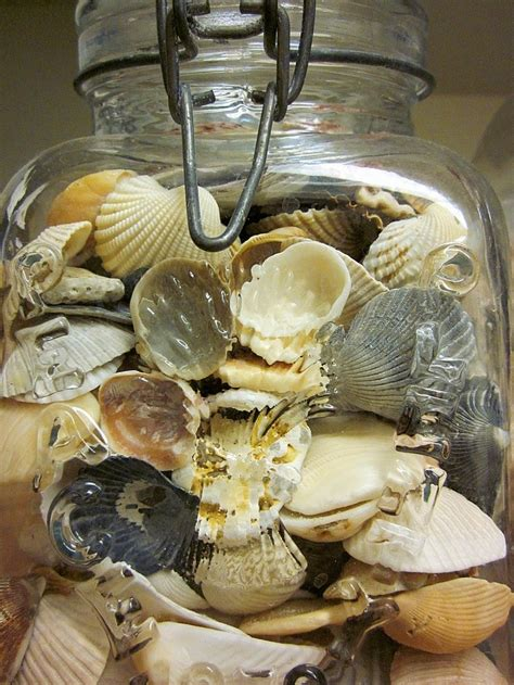 decorating seashells summer home decorating tips